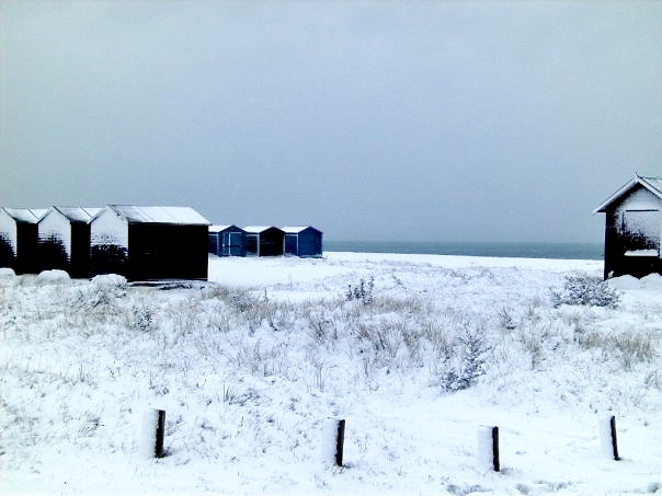 Hayling in the snow